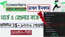 PicoWorkers Survey Earning  Double Earn from PicoWorkers-fd469764